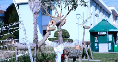 Freguesia de Lourinhã e Atalaia apresenta decorações de Natal em madeira