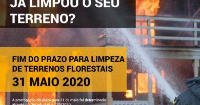 Limpeza de Terrenos 2020
