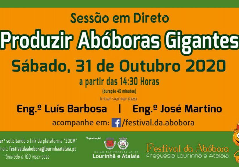 Sessao_em_direto_Aboboras_Gigantes_web